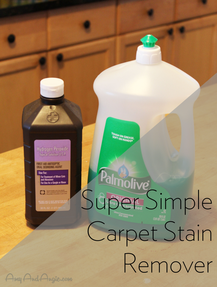 amy-and-angie-carpet-stain-remover