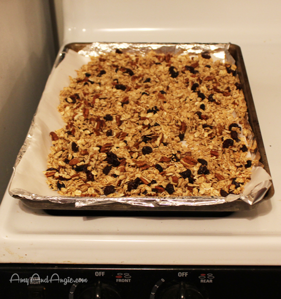 amy-and-angie-rum-raisin-granola-4